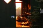 Wanhöden Stimmungsbild Sonnenaufgang Kühe Stall