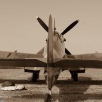 MH434 - Supermarine Spitfire IX